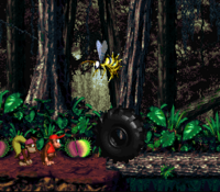 DKC2 Screenshot Dschungelzauber