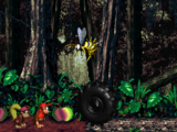 Dschungelzauber