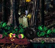 DKC2 Screenshot Dschungelzauber 4