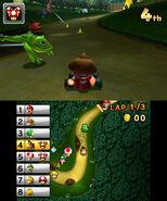 DK Jungle Frog