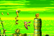 DKC2GBA Screenshot Klapper-Misere 3