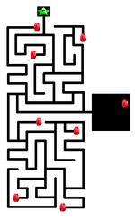 The Secret Ancient Temple Maze