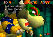 BBBBowser