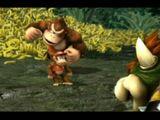 The Jungle (Super Smash Bros.)
