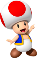 Toad MSOG