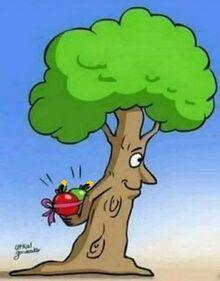 The Fruit-Bomber