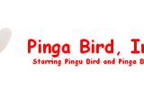 Pinga Bird, Inc.