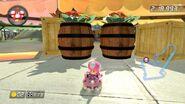 Barrel (Toadette)