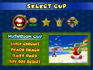 Main menu (GCN) - 6
