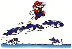 Dolphin | Mario Kart Racing Wiki | FANDOM powered by Wikia