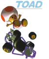 MK64Toad