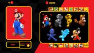 Mario Kart X Character Select Skin Window