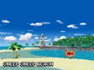 Cheepbeach