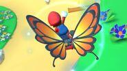 MKT Butterfly Sunset