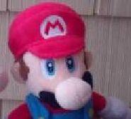 Mario MSR