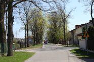 Kasztanowa 2010