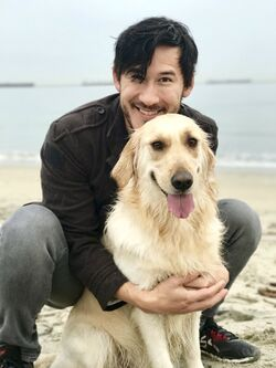 Chica and Mark 2017