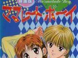 Marmalade Boy (anime film)