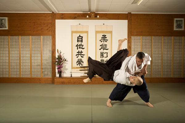Aiki-jūjutsu | Martial Arts Wiki | FANDOM powered by Wikia