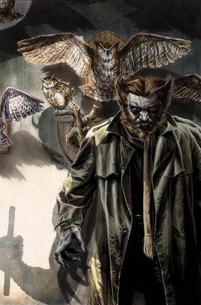 Owl 114