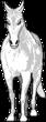 Banshee PhantomRiders Horse RichB