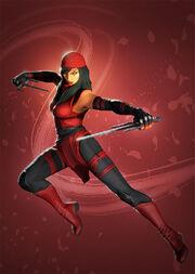 Elektra Assassin Event
