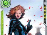 Black Widow (disambiguation)