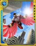 Overflight Falcon