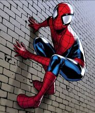 Человек-паук (6160) 1