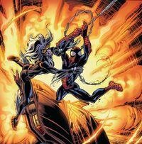 USM 82 Spider-Man and Black Cat
