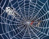 Spider-Woman and Jeff Hunt is web of giant spider