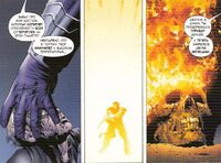 Johnny Storm's death Earth-20604