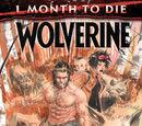 Wolverine Anual Vol 6 1