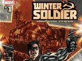 Winter Soldier Vol 1