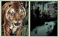Frank Castle meets a tiger
