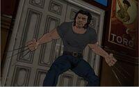 Wolverine TRN005