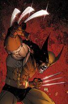 Wolverine Origins Vol 1 1 Variante de Turner Sin Texto