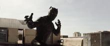Чёрная пантера выследил Барнса - Противостояние
