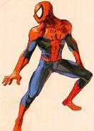 Spider-Man Peter Parker (Tierra-TRN177) MvC2-artwork