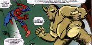 Rhino VS Spidey