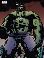 Robert Bruce Banner (Earth-11080) 0001