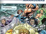 Maraudeurs (Terre-616)