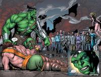 Incredible Hulk 107-023