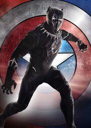 T'Challa (Terra-199999) em Capitão América Guerra Civil 002
