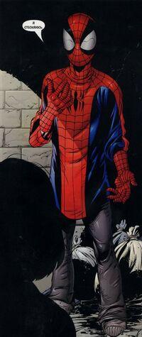 USM 41 half suit of Spider-Man