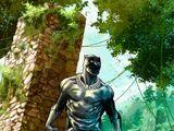 T'Challa (Terra-616)