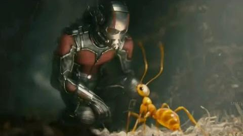 ANT-MAN - Discovery Channel 'Special Look' (2015) Paul Rudd Marvel Movie 360p