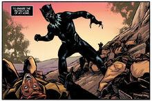 Чёрная пантера в бою - Black Panther Prelude