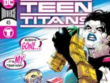 Teen Titans Vol 6 45
