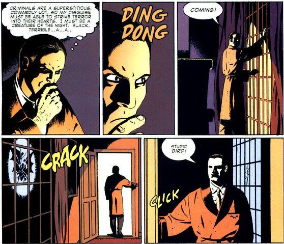 File:Bruce Wayne Detective 27 001.jpg